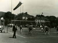 Galeria : Sport i edukacja